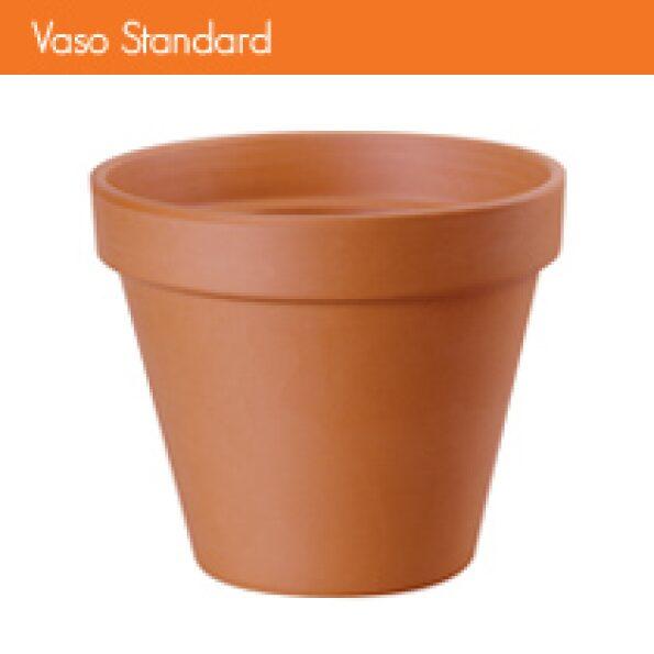 v_standard 6-10